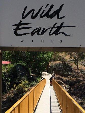 Wild Earth Outdoor Kitchen & Cellar Door: suspension bridge