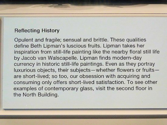 The Speed Art Museum : reflecting history