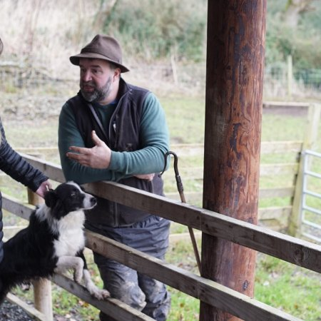Annamoe, Irlanda: Loved my tour with Michael and his sheepdogs!!
