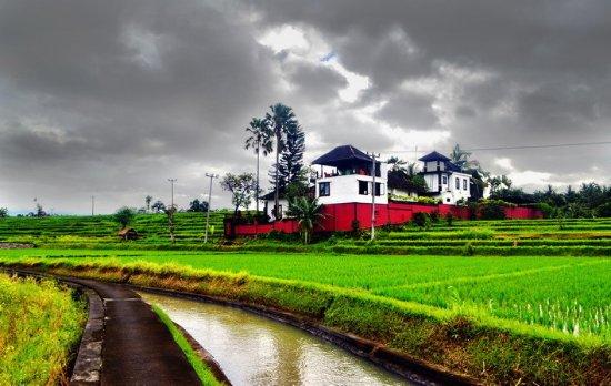 Balam Bali Villa: Free Tracking Service