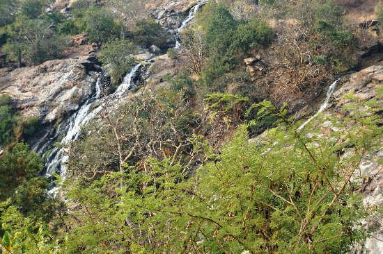 Shivasamudram Falls: IMG-20180127-WA0104_large.jpg