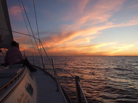 Blue Crab Chesapeake Charters: Rock Hall's Original Sunset Cruise
