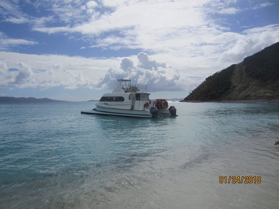 Calypso Charters Bad Kitty: Bad Kitty- 2 225hp Evinrude catamaran