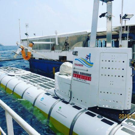 Whale Submarine Maldives: photo0.jpg