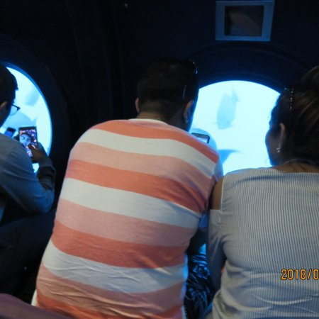 Whale Submarine Maldives: photo2.jpg