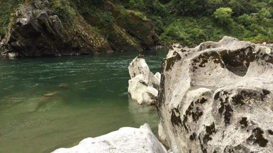 Nelson-Tasman Region, Nueva Zelanda: FB_IMG_1517157243111_large.jpg