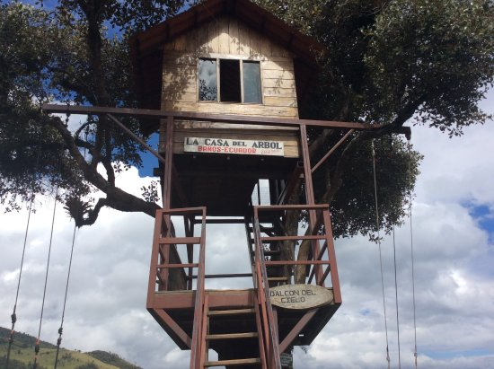 Casa Del Arbol: Tree House