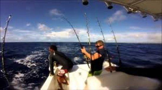Captain jack 39 s santa barbara tours santa b rbara lo for Santa barbara fishing report