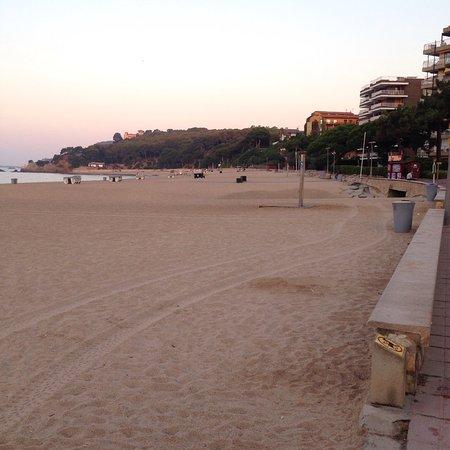 Apartamentos Sa Gavina Gaudí: photo7.jpg