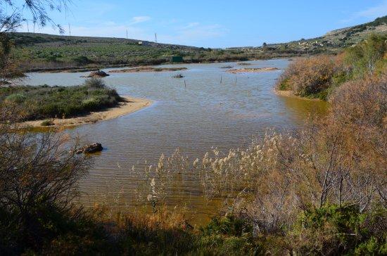 Għadira Nature Reserve