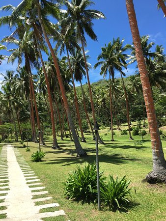 Vanua Levu, Fiji: Major Pathway from Clubhouse to Villas