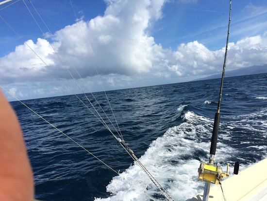 Wayward Wind Grenada Fishing: More trolling off Grenada on a beautiful day