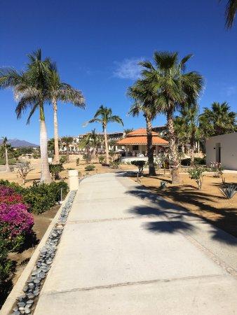 Secrets Puerto Los Cabos Golf Amp Spa Resort Updated 2018