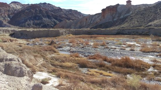 Tecopa, Califórnia: The Amargosa River - a short trail walk from China Ranch