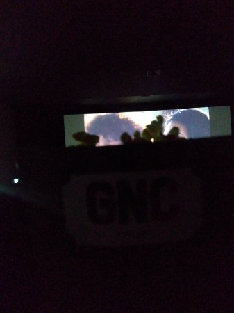 ‪GNC Cinemas‬