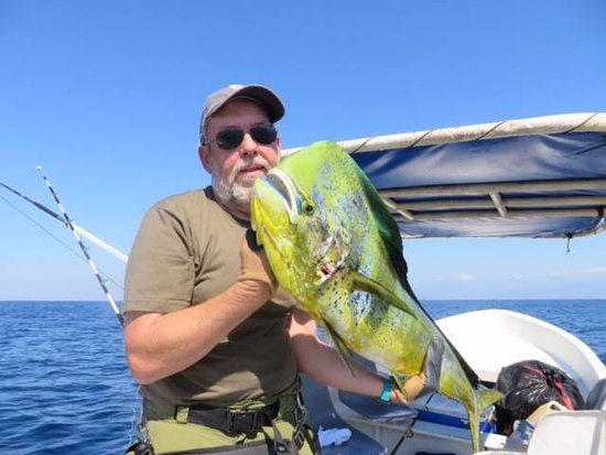 "Omar's sportfishing: A great day of fishing!    ""MAHI MAHI"""