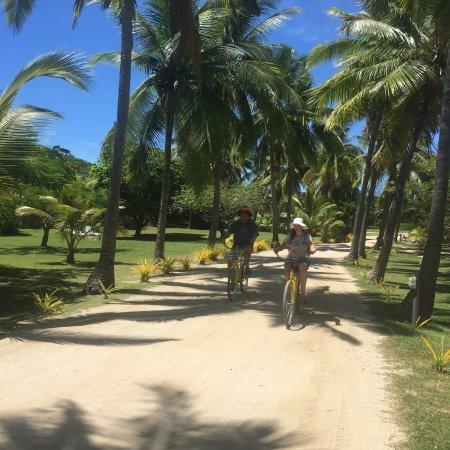 Plantation Island Resort: photo2.jpg
