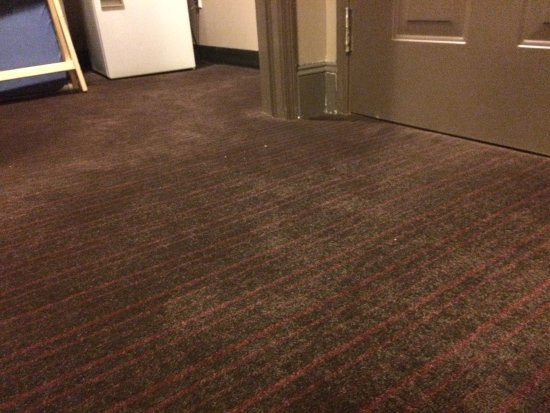 Ordinaire Magnolia Hotel Dallas Downtown: Dirty, Stained Carpet (front Door And  Closet)