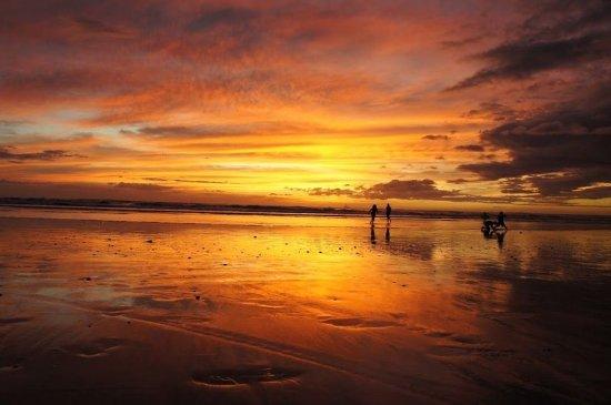 Плайя-Гранде, Коста-Рика: Other