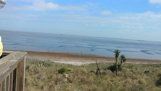Texas Gulf Coast, TX: 0128181305_large.jpg