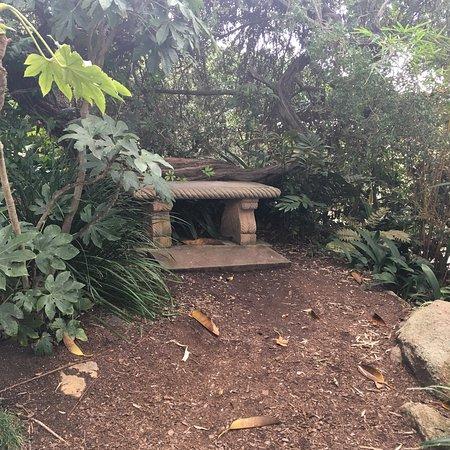 Self Realization Fellowship Hermitage Meditation Gardens Encinitas All You Need To Know