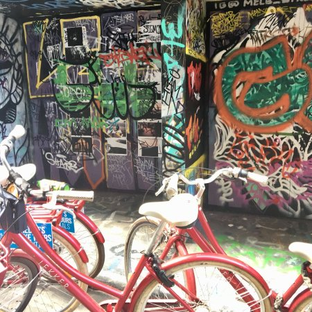Freddy's Bike Tours: photo1.jpg
