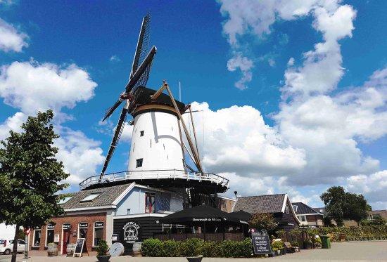Bodegraven, Holland: Brouwcafé de Molen