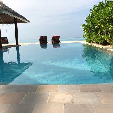 Vilu Reef Beach Spa Resort Reviews
