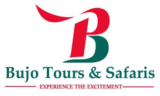 Moshi, Tanzania: Our Logo