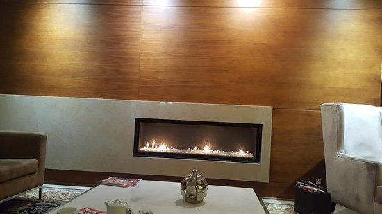 Dom Goncalo Hotel & Spa: Lareira