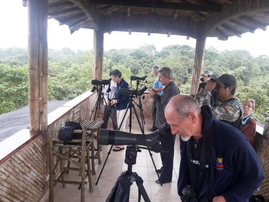 San Jorge de Milpe Eco-Lodge Orchid & Bird Reserve: 60 foot high spacious Observation Tower overlooking the Tropical Rainforest Canopy
