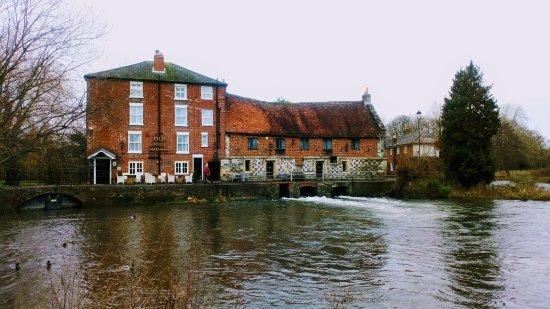 Harnham, UK : DSC_0051_large.jpg