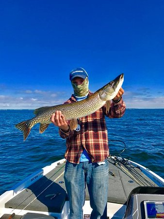 Stay Bent Fishing Tours: Nov 2017 - Another wonderful year on the water got to me lots of great people and share some awe