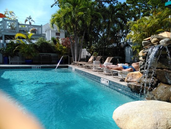 Eden House: Heated pool and waterfall