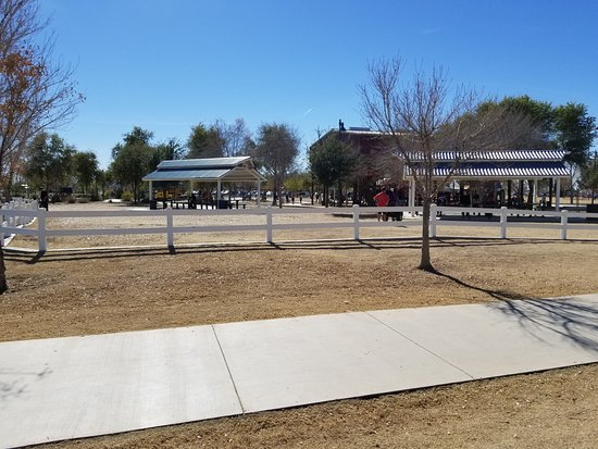 Tumbleweed Park: Party area
