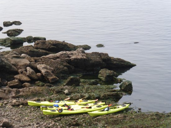 Outer Island Expeditions : Orcas Island