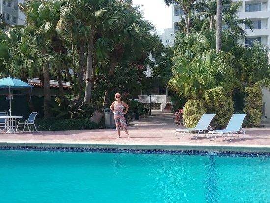 Seagull Hotel Miami Beach: Vue de la piscine