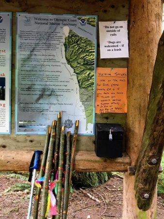 Clallam Bay, WA: Cape Flattery Trailhead where you can borrow poles
