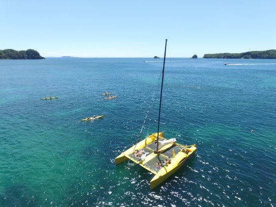 Whitianga, Nouvelle-Zélande : Chill out with Boom