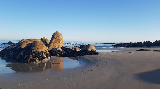 Absolute Beach Accommodation: 20180129_070307_large.jpg
