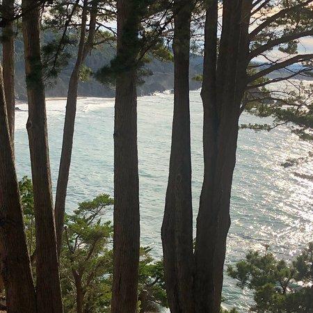 Whale Watch Inn by the Sea : photo3.jpg