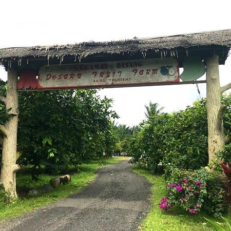 Desaru Fruit Farm: photo0.jpg