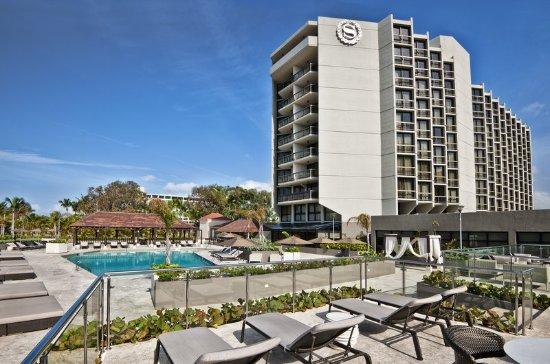 Sheraton Santo Domingo Hotel: Pool