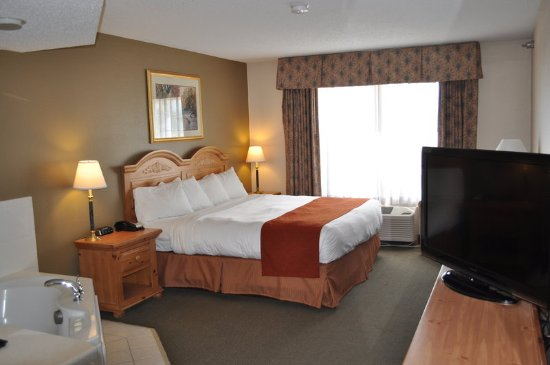Country Inn Suites By Radisson Buffalo Mn Guest Room