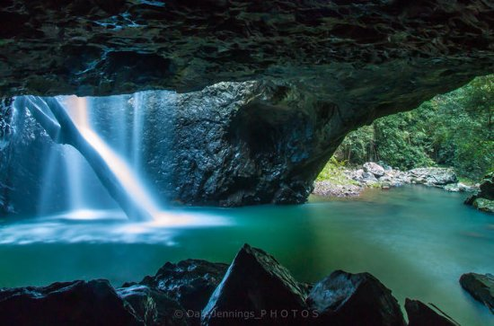 Springbrook National Park, Natural Bridge Hiking Tour from the Gold...