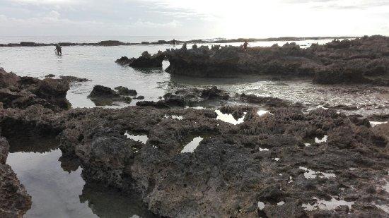 'Eua Island, Tonga: IMG_20180125_182450_large.jpg