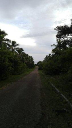 'Eua Island, Tonga: IMG_20180125_191125_large.jpg