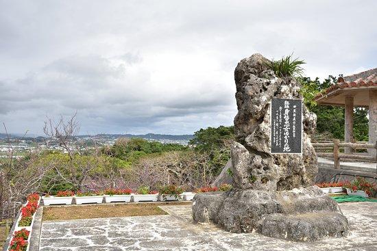 Yaese Park