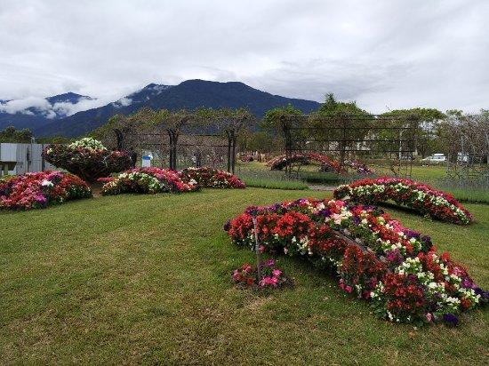 Taitung, Taiwan: TA_IMG_20180130_120304_large.jpg