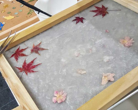 Higashiosaka, Japan: Making Autumn Leaf Paper